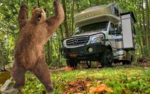 Can Bears Break into RVs