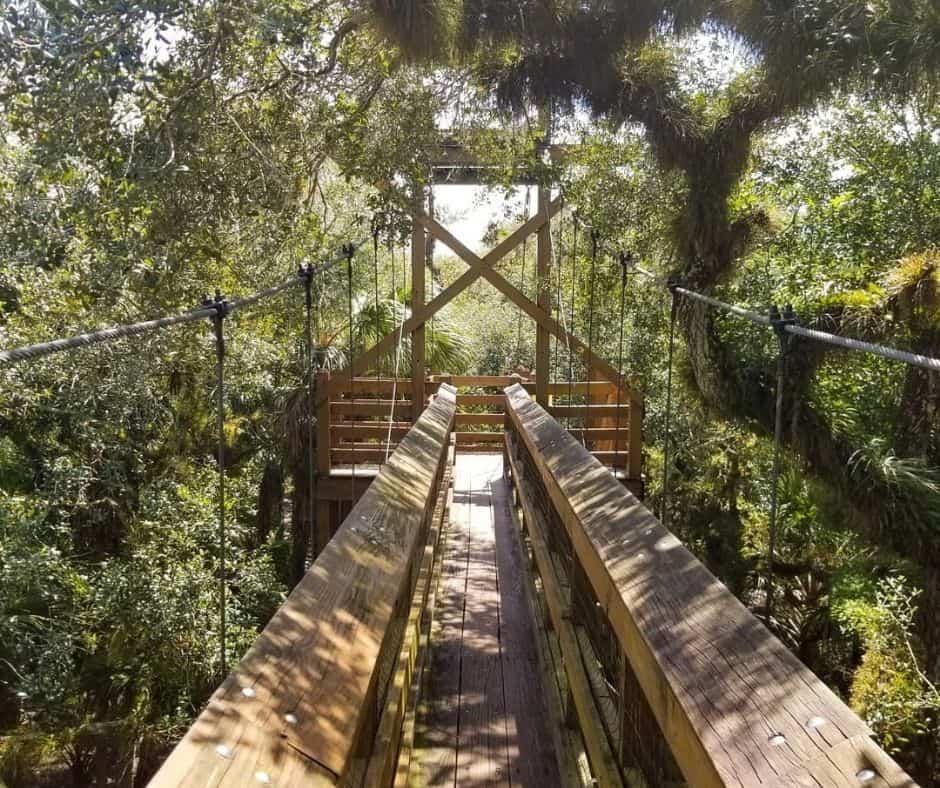 Myakka River State Park - Sarasota County